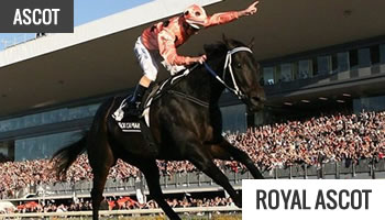 Horse Racing Festivals - Royal Ascot Meeting