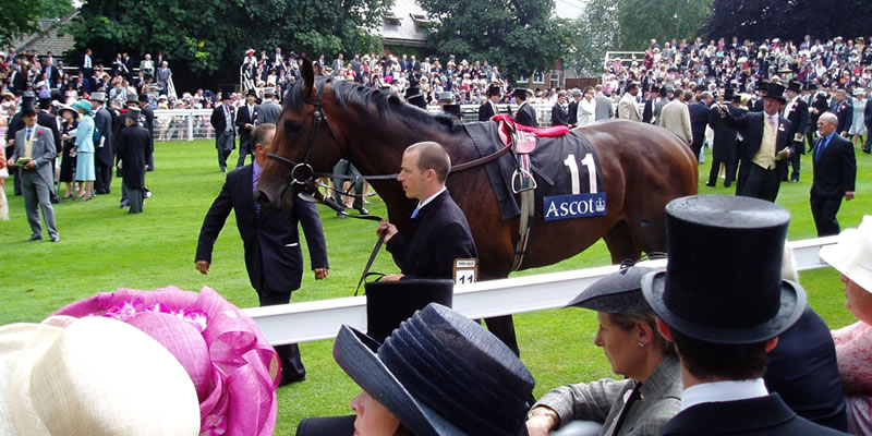 Ascot Royal Ascot Parade Ring