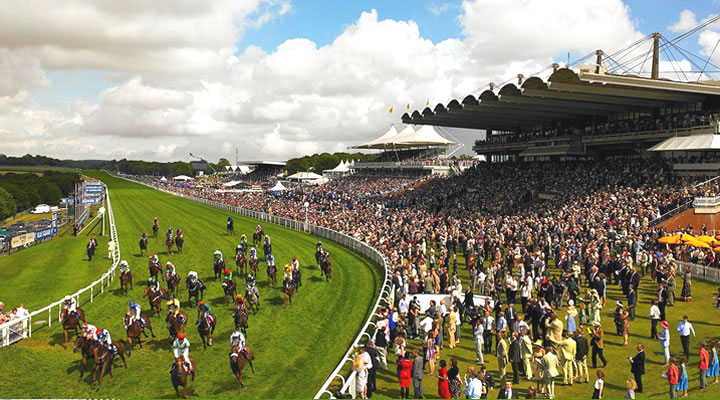 Glorious Goodwood Racecourse Trackside Grandstands