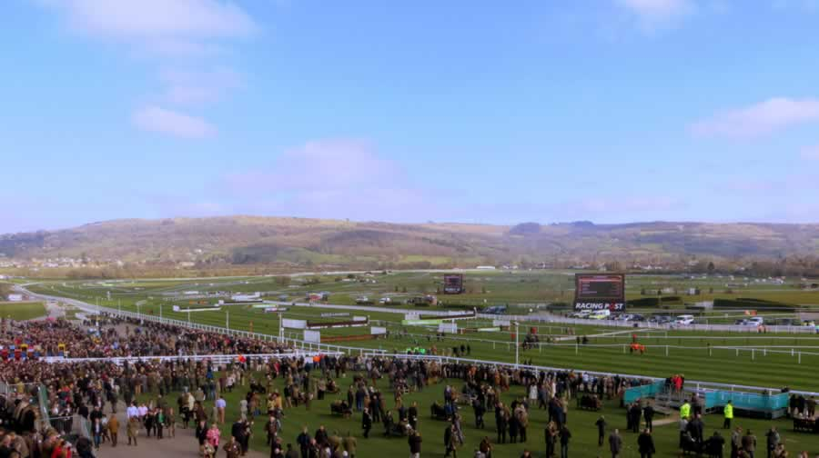 Cheltenham Racecourse Festivals Of Racing