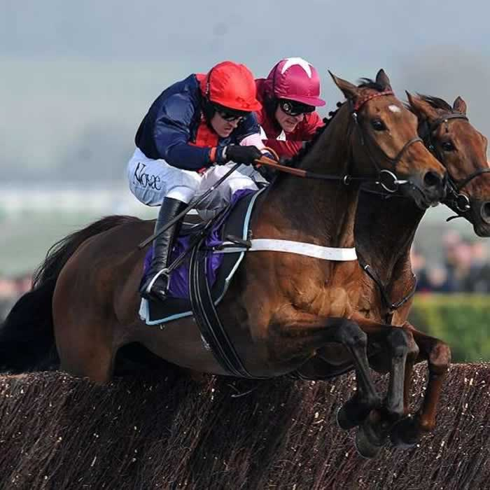 Bobs Worth Wins Hennessy Gold Cup 2012