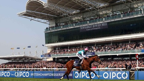 Five things to ponder for the 2019 Flat season