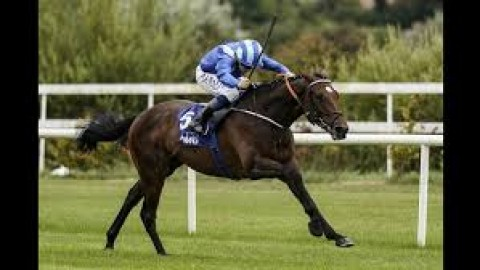 Moon can shine In Guineas puzzle