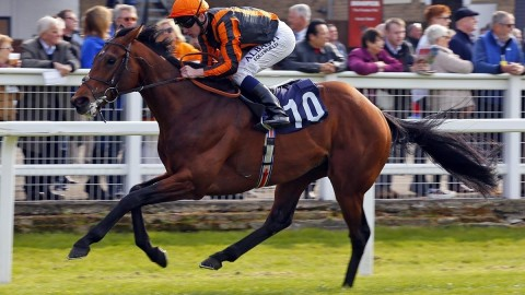 Epsom Investec Derby Festival Preview