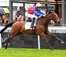 Investec Oaks – The Contenders