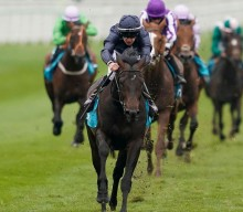 Investec Derby – The Contenders