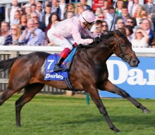 Royal Ascot Day One: St James's Palace Stakes – The Contenders