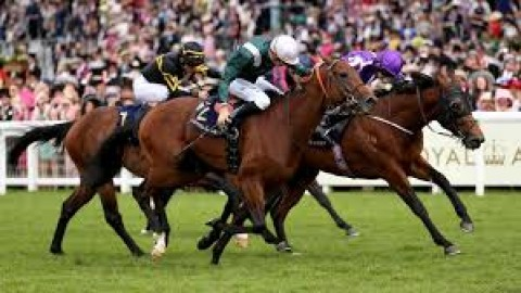 Royal Ascot selections – Saturday 22nd June