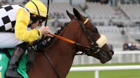 Curragh/Newcastle selections – Thursday 27th June
