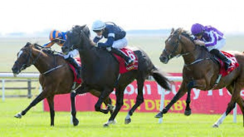 Curragh and Newcastle selections – Friday 28th June