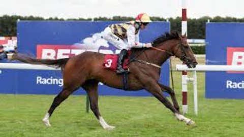 Galway & Goodwood selections – Friday 2nd August