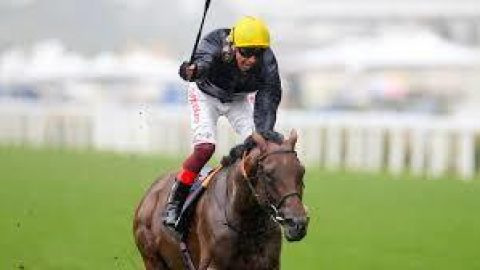York Ebor Meeting Day One – What's On