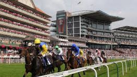 York selections – Saturday 24th August