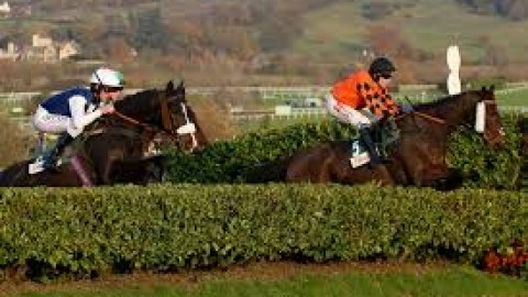 Cheltenham Selections – Sunday 17th November
