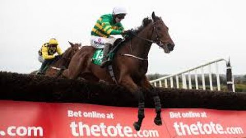 Fak news expected at Cheltenham