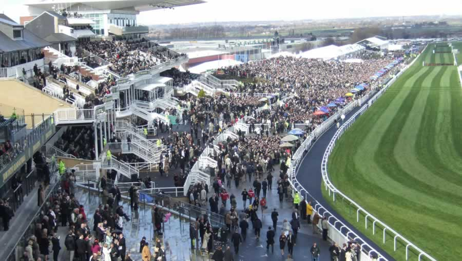 Aintree Racecourse Festivals Of Racing