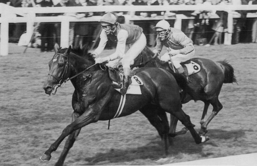Nijinsky Wins St Ledger 1970