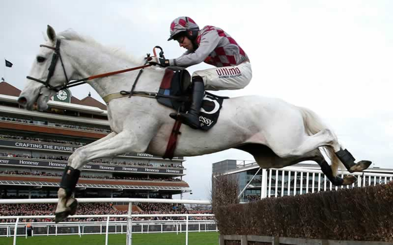 Smad Place wins Hennessy Gold Cup 2015