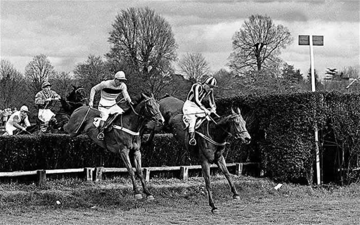 Mandarin wins the first Hennessy Gold Cup in 1957 (with Taxidermist)