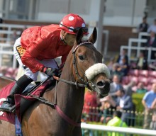 Royal Ascot Day One: King's Stand Stakes – The Contenders