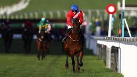 Course and trainer form a big Plus for Tard