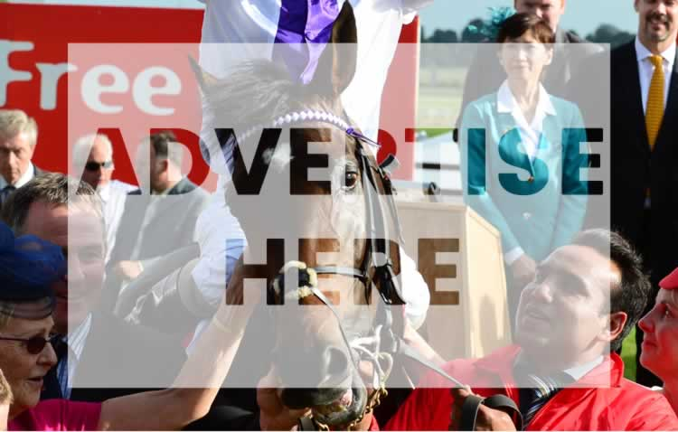 Advertise on Festivals of Racing