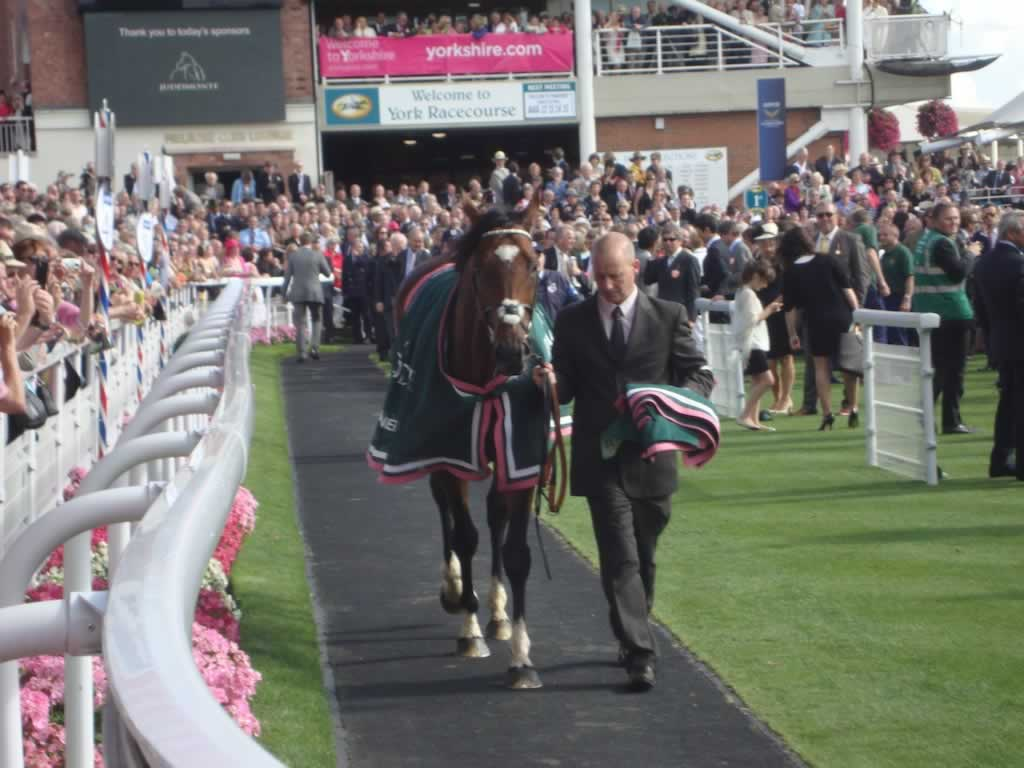 Frankel parades at York Racecourse after winning at The Juddmonte International Stakes at the Ebor